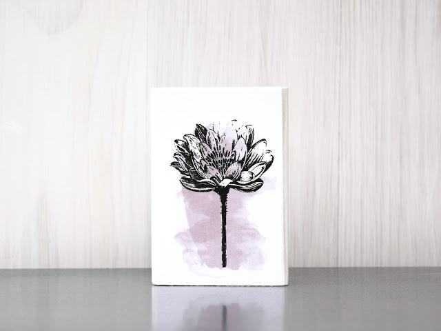 Da ist sie wieder – die Blume der Romantik – wir sehnten uns so sehr nach ihr…